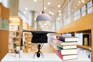 工商管理(MBA)在职研究生拿双证难不难